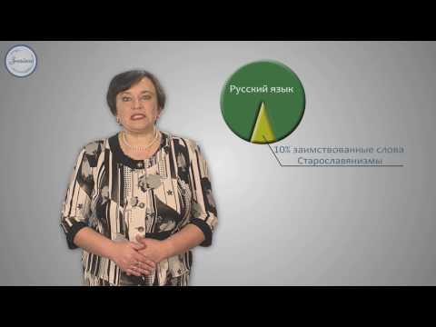 Как определить заимствованные слова в русском языке
