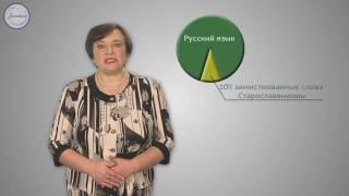 Русский 6 класс. Исконно русские и заимствованные слова