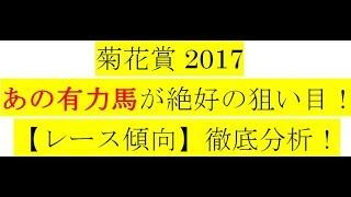 菊花賞2017【レース傾向】徹底分析!あの有力馬が絶好の狙い目!