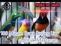 Suara Burung Untuk Masteran Super Lengkap Koleksi Suara Burung Alam Liar Full 10 Jam Ngobra(.mp3 .mp4) Mp3 - Mp4 Download