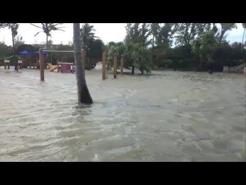 Shelly Bay Playground Flooded, March 3 2018