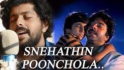 ethamruthum tholkkum | Snehathin Poonchola cover | Malayalam Cover songs | Patrick Michael