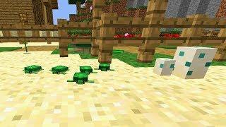 SCHILDKRÖTEN KINDERGARTEN! in Minecraft 1.13