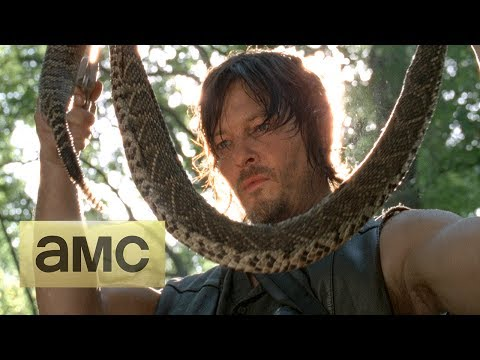 The Walking Dead Season 4 Returns