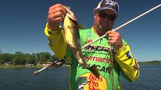 Tips to Locate Schooling Bass in Grass LakesTHO1902