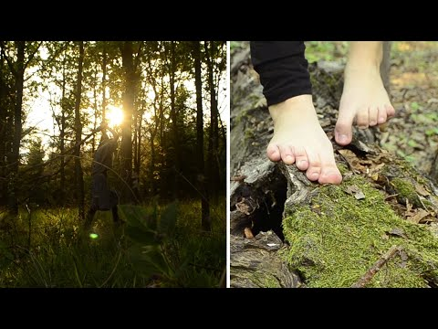 nature ASMR - 👣 barefoot forest trip 🌲+ deer