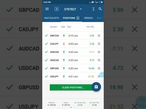 octafx-live-position-6-currency