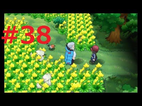 [ポケモンY]#38,迷いの森~ポケモンの村まで[まったり初見実況] - YouTube
