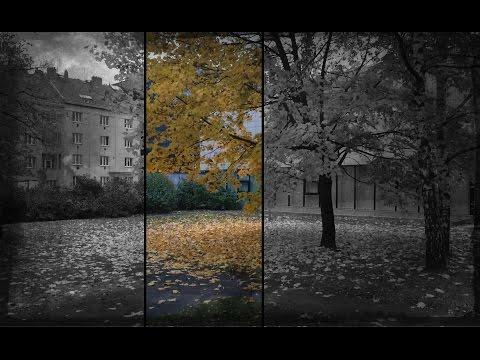 Осенний веган влог. Прага без регистрации и смс