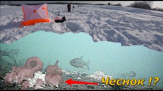 Рыбалка на реке Лобва Чеснок работает но лунку перекормил Свердловская область