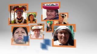 Participación política indígena en países andinos