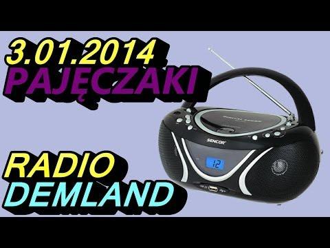 Pajęczaki - Radio Demland 03.01.2014