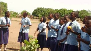 Project Luangwa__an Introduction To The Organization
