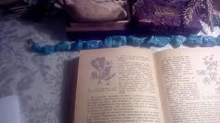 Лапчатка гусиная (гусиные лапки), описание и лечебное применение.