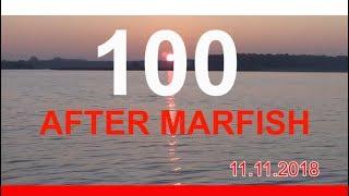 After Marfish # 100 Jak to się zaczęło? Spinningowe wyprawy Liga Marfisha. Live chat - Na żywo