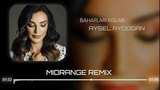 Aysel Aydoğan - Baharları Kışları (MIDRANGE REMIX)