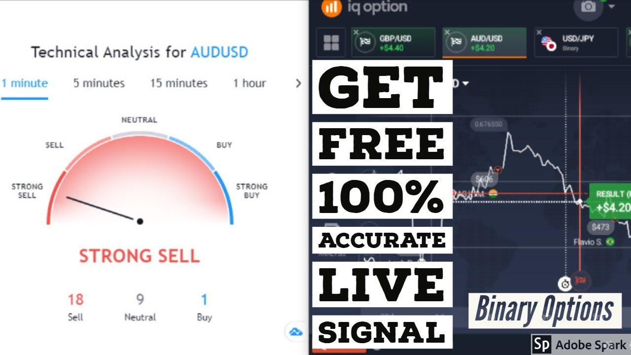 Binary options pro signals login live 200 guineas betting