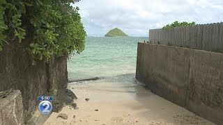 Shark attack off Lanikai Beach leaves swimmer with serious leg injuries