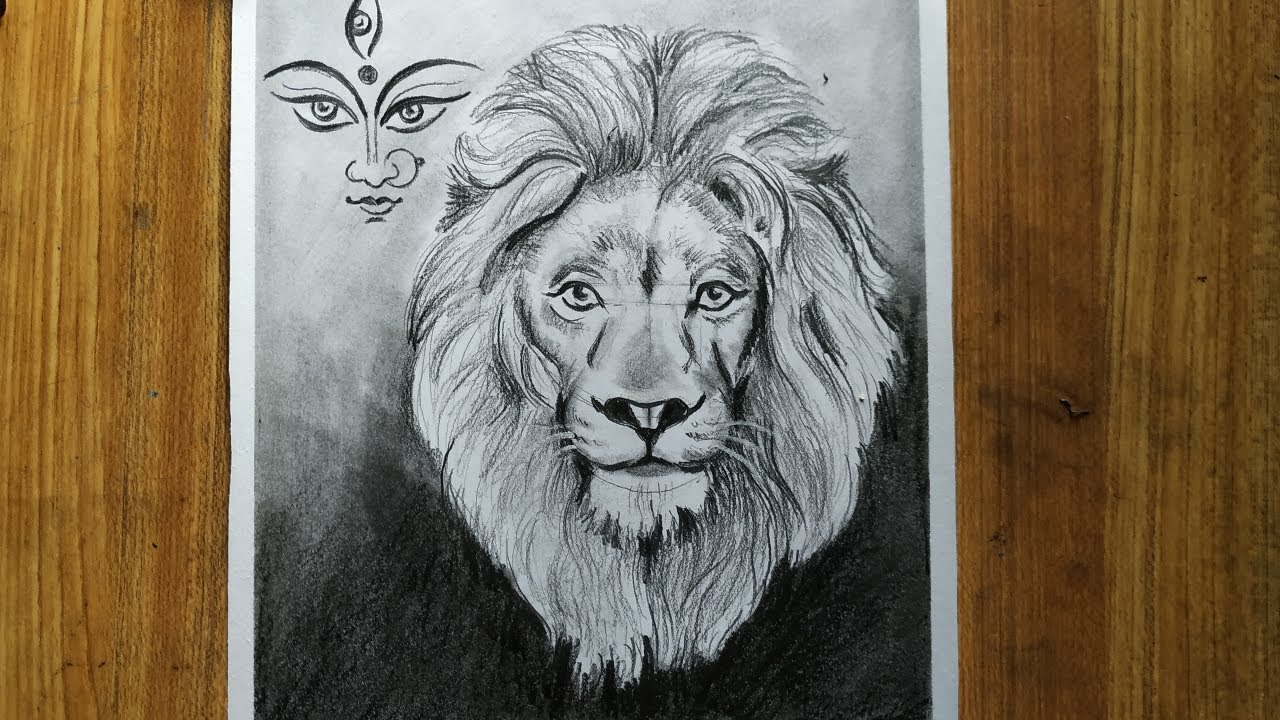 How To Draw Maa Durga And Lion Face How To Draw A Lion Lion Drawing Pencil Sketch Drawing Youtube Are you searching for lion png images or vector? how to draw maa durga and lion face how to draw a lion lion drawing pencil sketch drawing