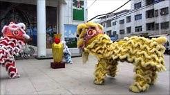 Chinaaustausch 2012: Drachentanz-Vorführung