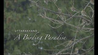 Uttarakhand_A Birding Paradise