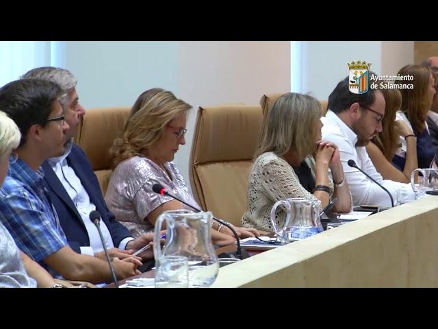Pleno Municipal. Sesión Ordinaria Nº 8 /2017