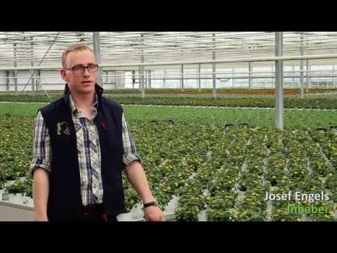 Pflanzen Engels Imagefilm