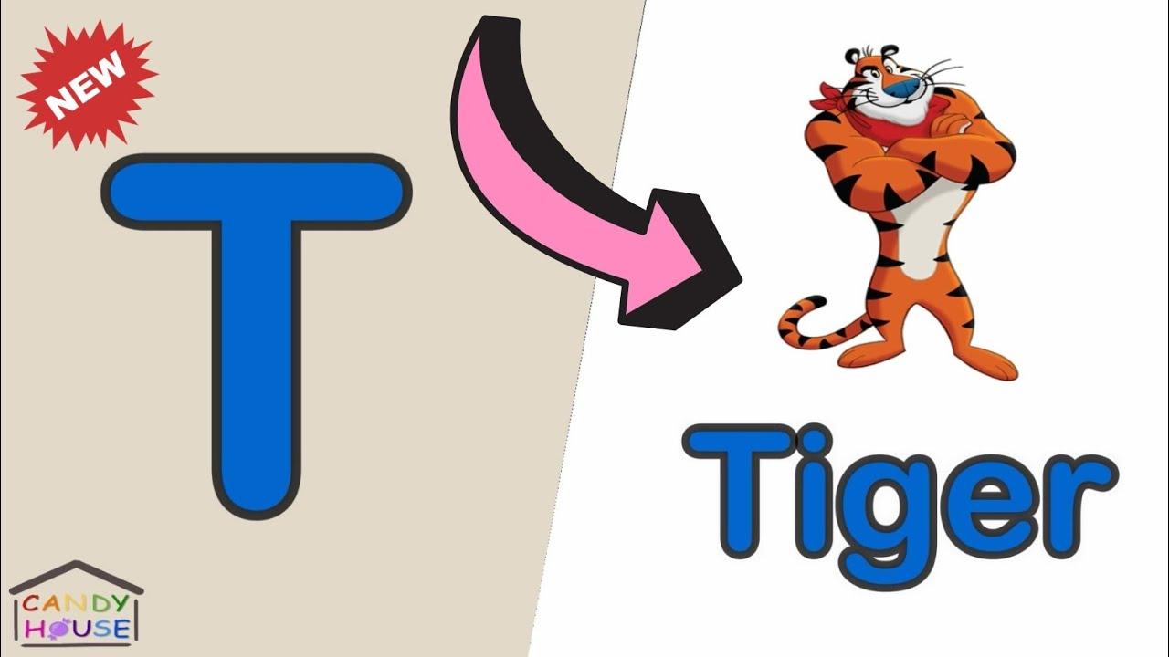 Phonics The Letter T كورس الصوتيات تعلم نطق الحروف الانجليزية بشكل صحيح T تعليم الاطفال حرف Youtube