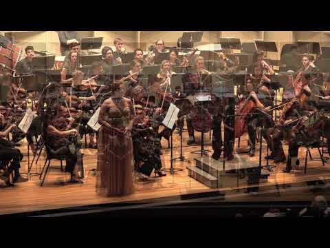 """""""Dich, Teure Halle"""" Tannhäuser (Wagner) - Stony Brook Symphony Orchestra"""