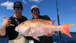 *GIANT MUTTON SNAPPER* Catch Clean & Cook (Q&A)