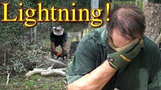 VLOG Lightning Strike Chainsawing Fix Chicken Free Range Fence & More