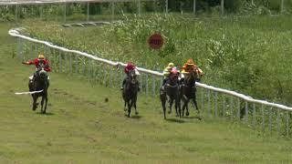 Vidéo de la course PMU PRIX DISCOURS - BROOX