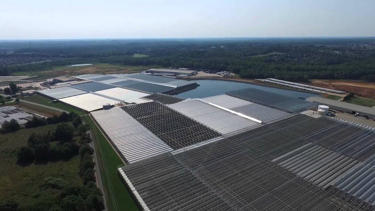 Metrolina Greenhouses Aerial Video