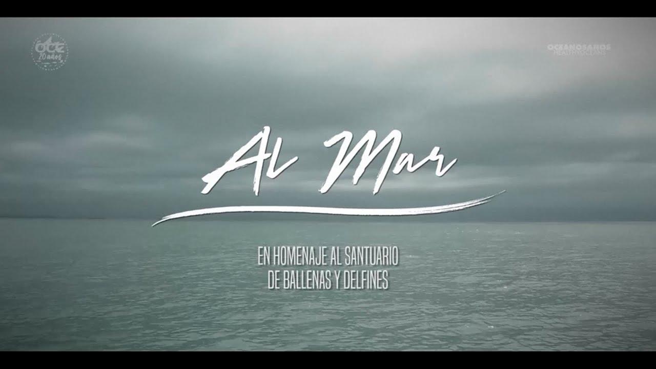 Mirá el video: Homenaje al Santuario de Ballenas y Delfines de Uruguay en su 7mo aniversario
