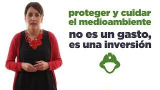 Estatuto de Bomberos Forestales. Ana Marcello.