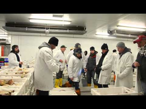 Brixham Fish Market