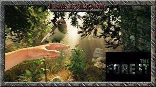 The Forest - Безумно красивая выживалка
