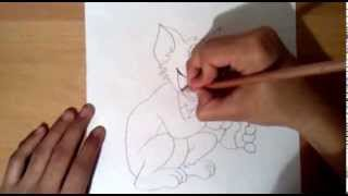 How to Draw Tom (Tom & Jerry)