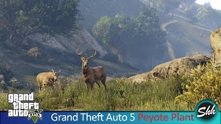 GTA 5 Peyote Plant Be an Animal Dog, Cat, Lion, Shark PC