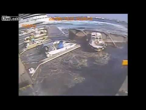 Carnival Cruise Ship  crash destroys entire marina