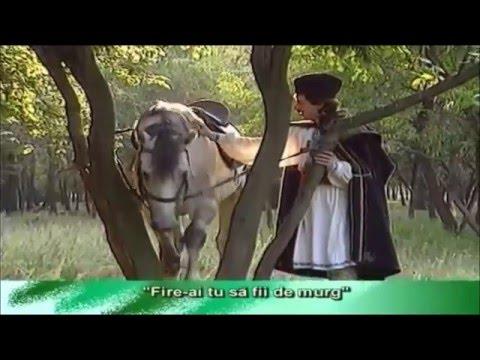 Liviu Vasilică — Fir ai tu să fii de murg © 🇲🇩 🇺🇸 🇷🇺 🇪🇦 🇱🇺 🇼🇫 🇸🇯 🇨🇭 🇪🇺