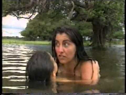 Pantanal - Uma das melhores novelas da Manchete(1990), completa, imagem nota 1000 - 63 DVDs