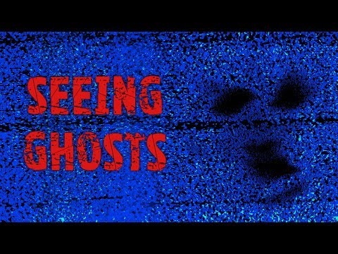 Seeing Ghosts | Visual ITC Continued | Real Paranormal Activity Part 74.1
