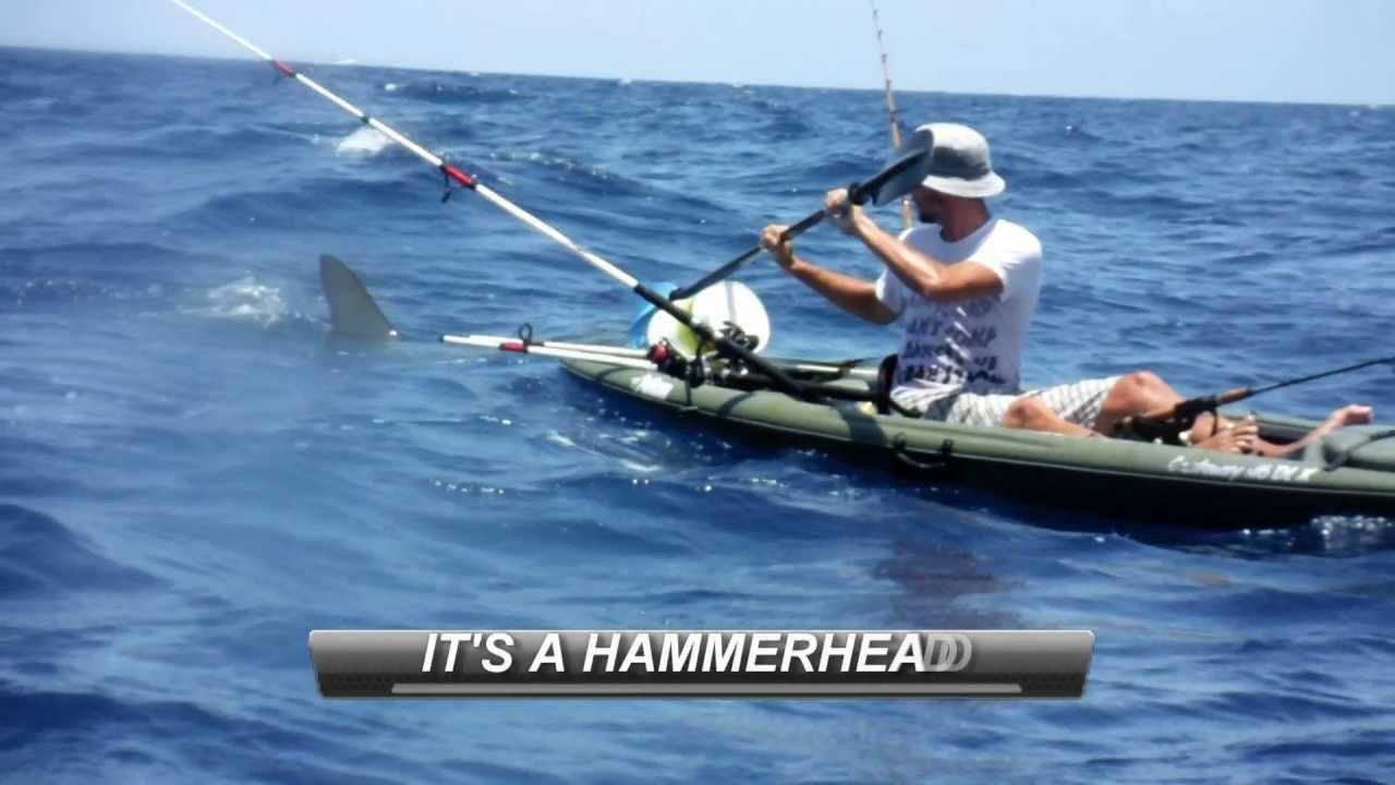 Hammerhead Shark Attacks Kayak Fisherman
