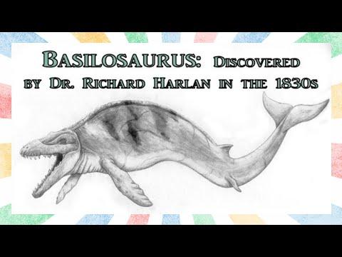 The Sea Serpent Whale Basilosaurus
