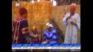 الجمرى حامد/اغنية هوساوية من النيل الازرق- - Algamry Hamed
