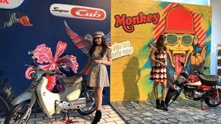LIVE Cận cảnh Honda Super Cub 125cc và Monkey