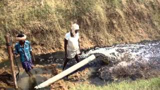 BIOFLOC SHRIMP POND SLUDGE REMOVAL,GEEKAY FARMS,INDIA