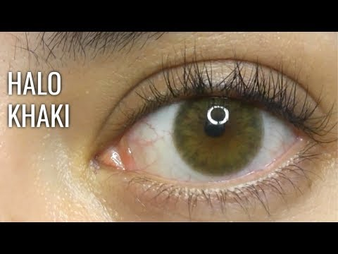 Siesta Crystal Halo Khaki Review | ZOOMED + Daylight (discount Danica10)