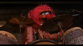 Muppet Show  ANIMAL Drum Solo  YouTube